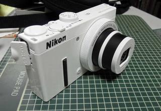 DSCN4887.jpg