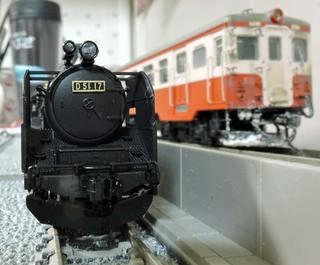 DSCN6240.jpg