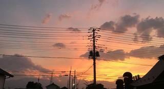 IMG_0281-photo.jpg