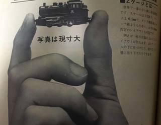 IMG_4260~photo.jpg